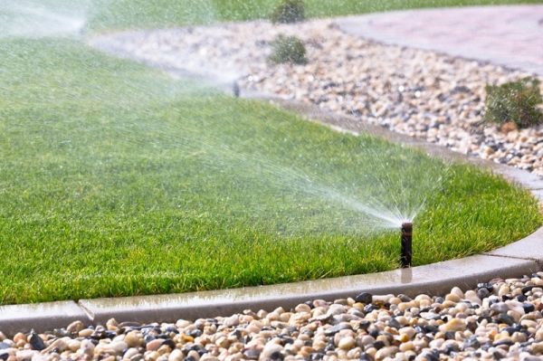 R alisation de jardin paysag au cap ferret bardo paysage - Arrosage automatique de jardin ...